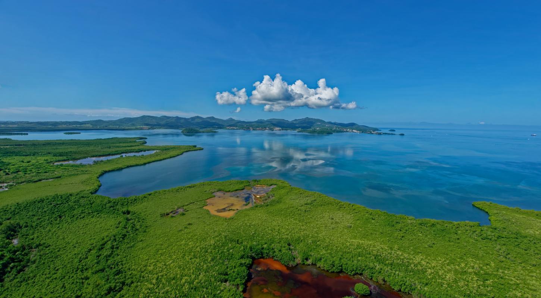 Baie de Génipa, PNRM/AUTREVUE